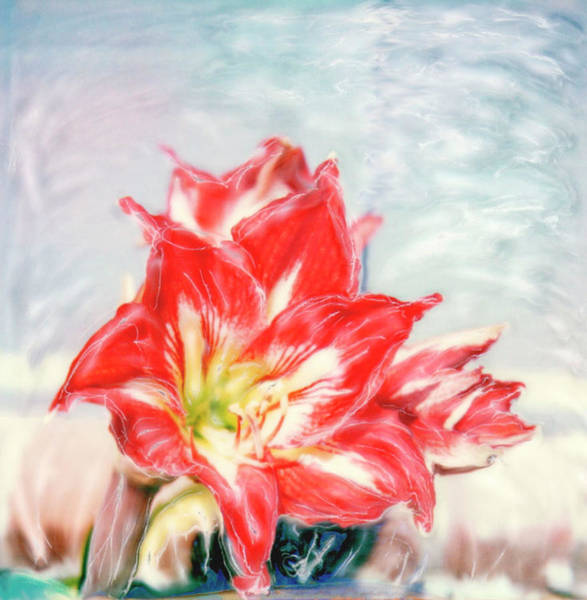 Color Image Digital Art - Lily by Claire Rydell