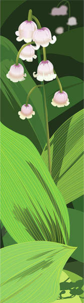 Lily Of The Valley Art Print by Marian Federspiel