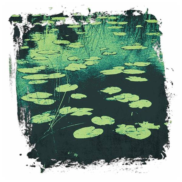 Digital Art - Lily Pad by Christopher Meade