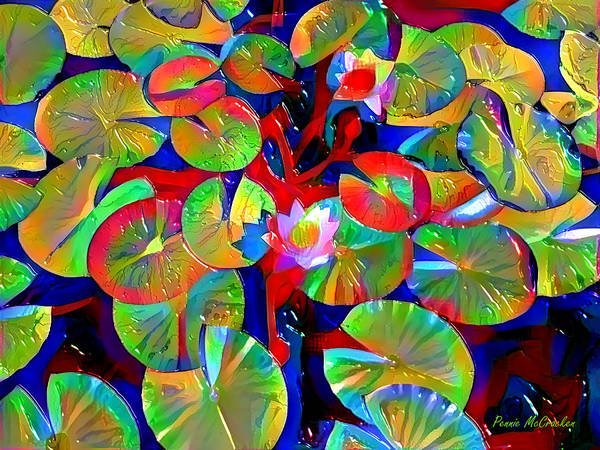 Photograph - Lily Pads by Pennie McCracken