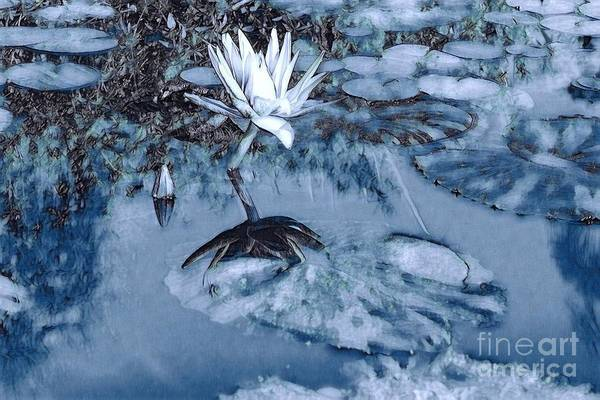 Wall Art - Digital Art - Lily Pond In Blue 01 by Eve Paludan