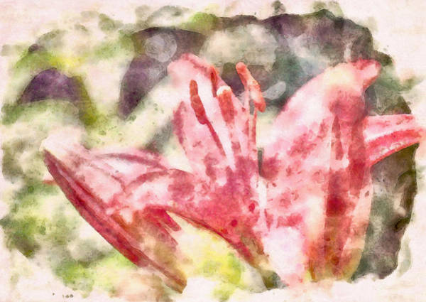 Painting - Lily Watercolor by Dan Sproul