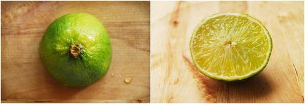 Photograph - Lime by Lamartinia