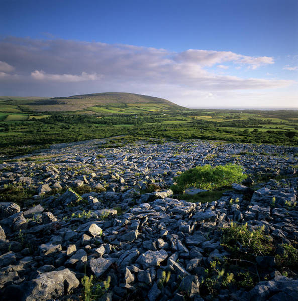 The Burren Photograph - Limestone Pavement, The Burren, County by Stuart Black / Robertharding