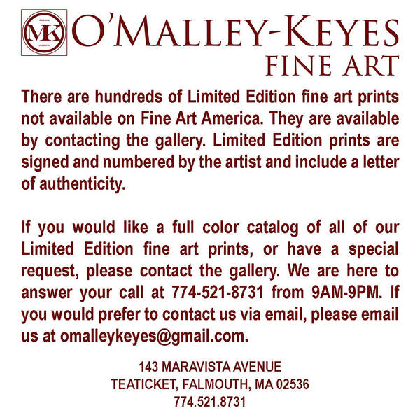 Limited Edition Wall Art - Painting - Limited Edition Prints by Julia O'Malley-Keyes