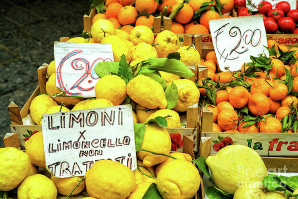 Photograph - Limoni In Sorrento by John Rizzuto