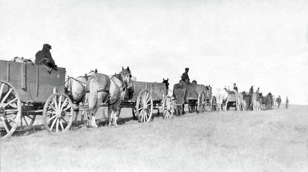Painting - Line Of Horse-drawn Carts, Frobisher, Saskatchewan by Celestial Images