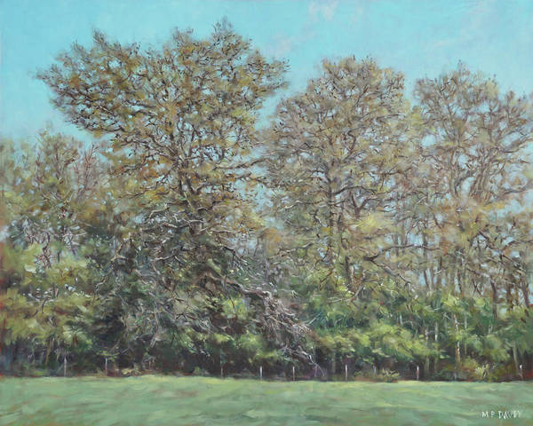 Painting - Line Of Trees In Hampshire During Autumn by Martin Davey