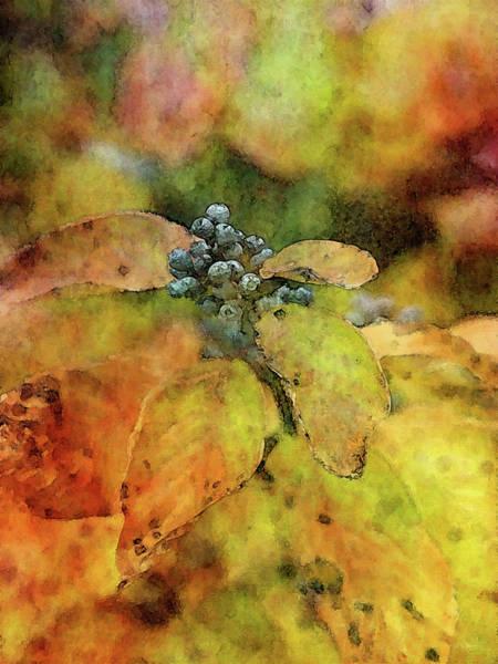 Photograph - Lingering 6094 Idp_2 by Steven Ward