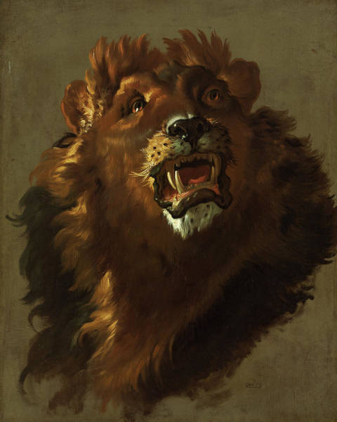 Wall Art - Painting - Lion, 1750 by Giuseppe Baldrighi