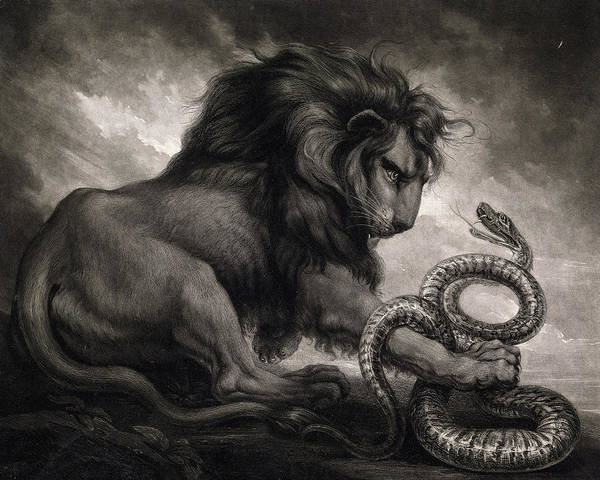 Wall Art - Painting - Lion And Snake, 1799 by Samuel William Reynolds