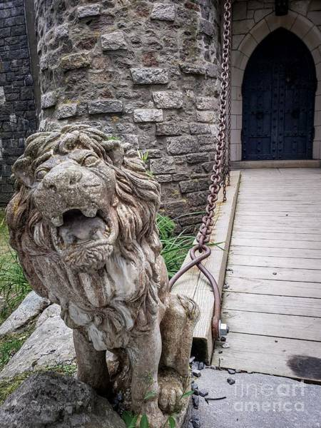 Photograph - Lion At The Gate by Mary Capriole