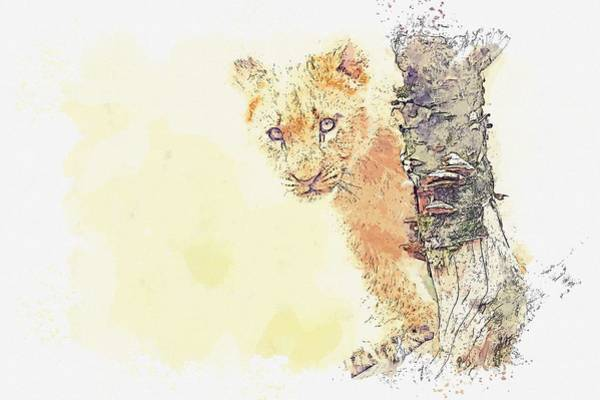Painting - lion cub -  watercolor by Ahmet Asar by Ahmet Asar