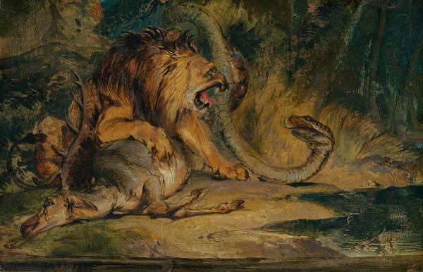 Landseer Painting - Lion Defending Its Prey by Edwin Landseer