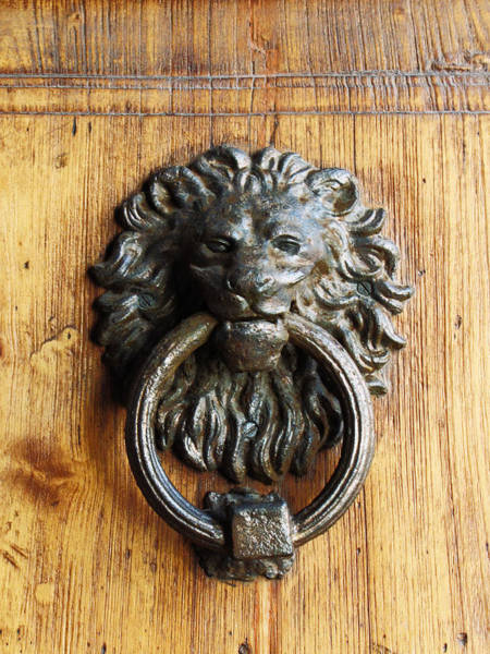 Handle Photograph - Lion Door Knocker by Taken By Chester Chu.