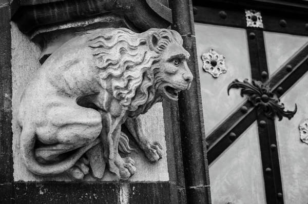 Photograph - Lion Gargoyle by Borja Robles