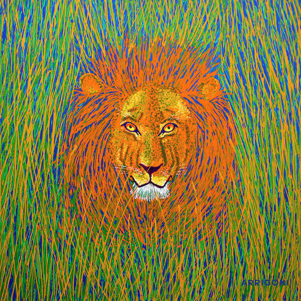 Painting - Lion In The Grass by David Arrigoni
