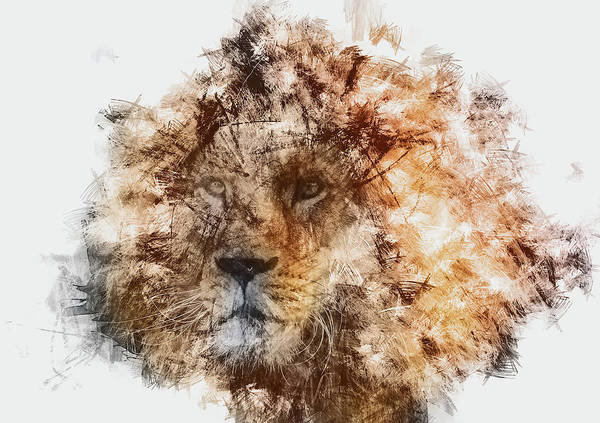 Painting - Lion King - 01 by Andrea Mazzocchetti