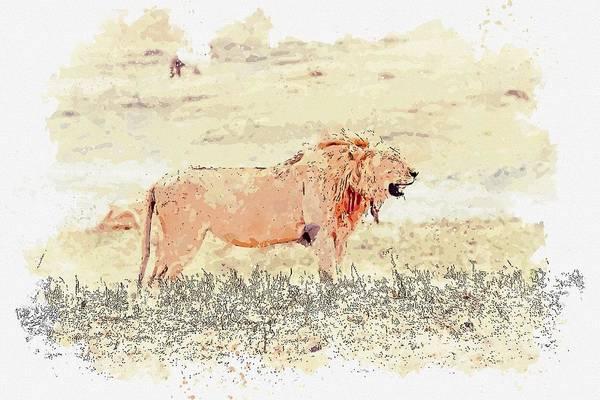 Wall Art - Painting - Lion, Ngorongoro, Tanzania -  Watercolor By Ahmet Asar by Ahmet Asar