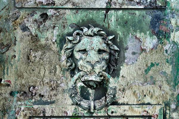 Wall Art - Photograph - Lion Patina by Gothicrow Images