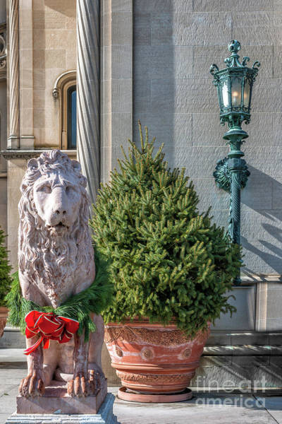 Photograph - Lion Statue - Biltmore Estate by Dale Powell