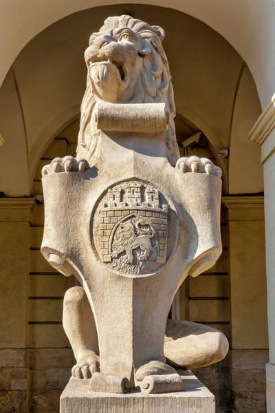 Photograph - Lion Statue by Fabrizio Troiani