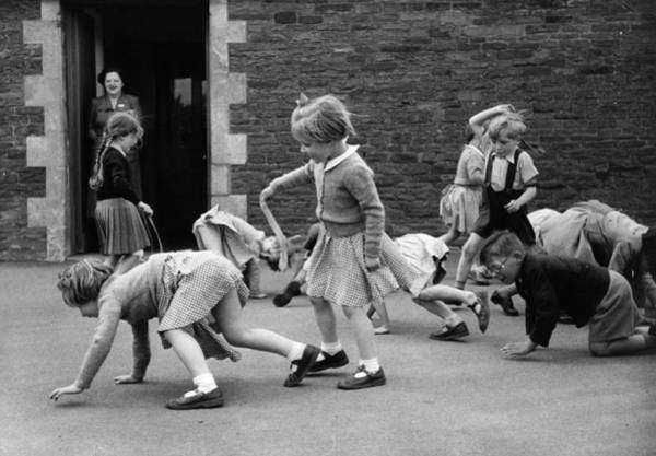 Learning Photograph - Lions And Tigers by Kurt Hutton