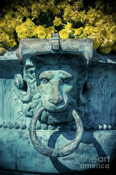Wall Art - Photograph -  Lions Head On Flower Planter by Colleen Kammerer