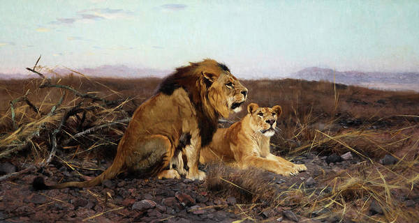 Wall Art - Painting - Lions In The Steppe by Wilhelm Friedrich Kuhnert