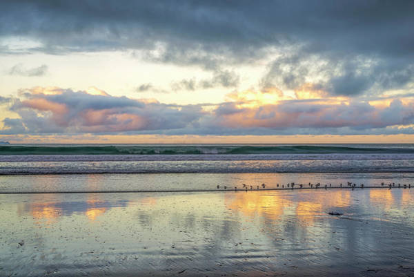 Photograph - Little Birds And A Sunrise by Joseph S Giacalone