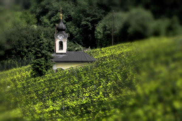 Photograph - Little Chapel In The Vineyard by Wolfgang Stocker