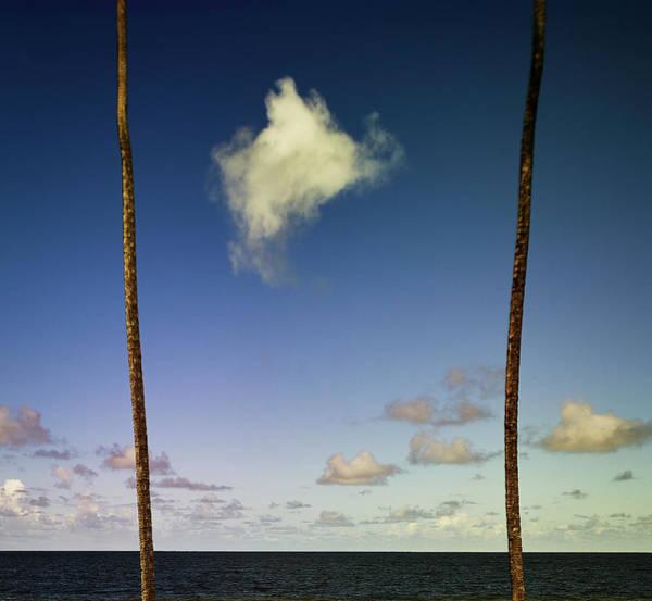 Photograph - Little Cloud by Trinidad Dreamscape
