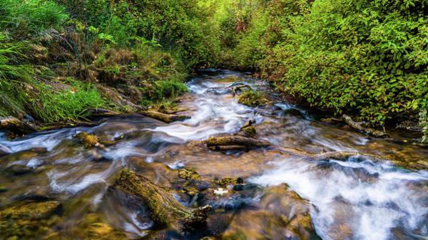 Photograph - Little Deer Creek by TL Mair
