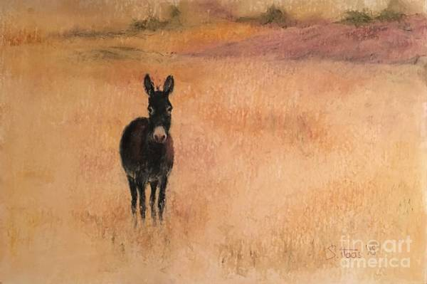 Wall Art - Painting - Little Donkey by Sabina Haas