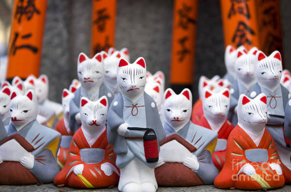 Wall Art - Photograph - Little Fox Statues At Fushimi Inari by Boocys