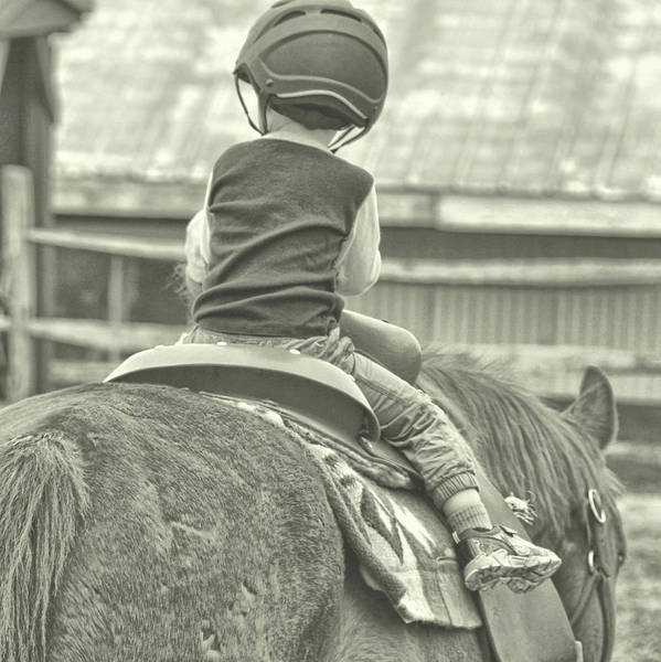 Photograph - Little Guy Big Guy by Dressage Design