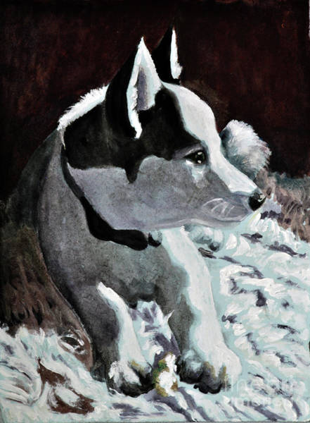 Husky Mixed Media - Little Huskey by Lori Moon