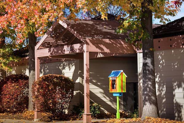 Photograph - Little Library 2 by Mark Mille