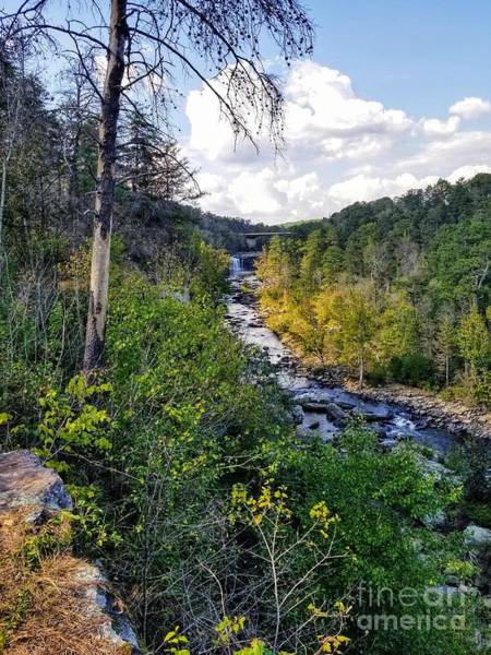 Photograph - Little River Canyon Alabama by Rachel Hannah