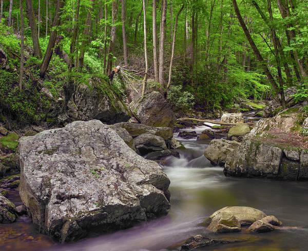 Photograph - Little Stony Creek, Jefferson Nf by