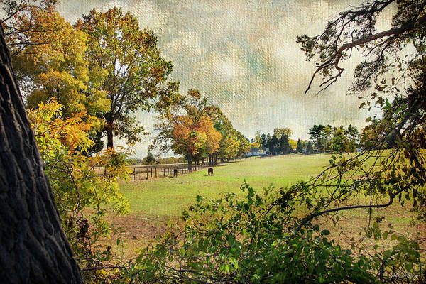 Photograph - Little Timber Ranch Berlin New Jersey by John Rivera