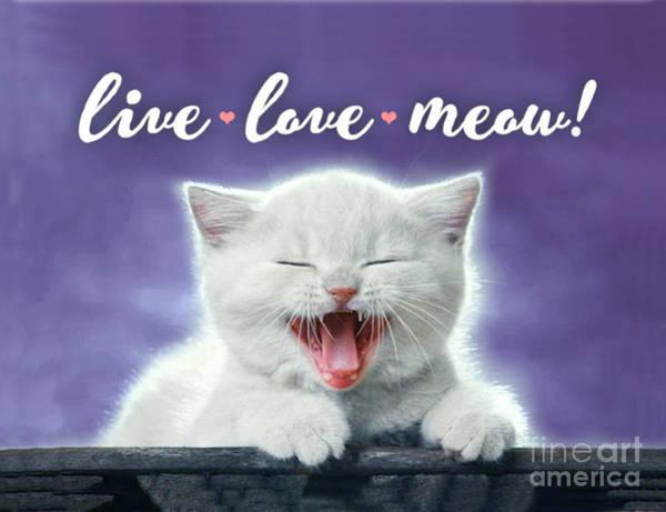 Wall Art - Digital Art - Live Love Meow Purple by Evie Cook