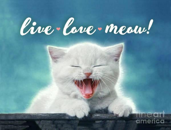 Wall Art - Digital Art - Live Love Meow Blue by Evie Cook