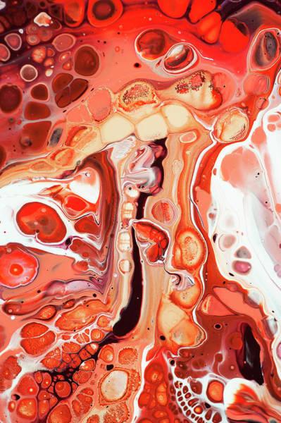 Wall Art - Photograph - Living Coral Fantasy Abstract by Jenny Rainbow