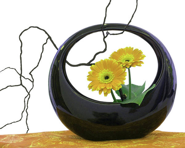 Wall Art - Photograph - Living Flowers - Ikebana - Yellow And Black by Nikolyn McDonald
