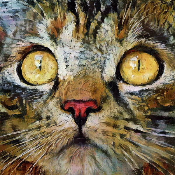 Digital Art - Lizzy The Brown Tabby Cat by Peggy Collins
