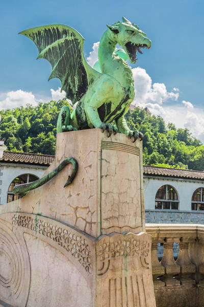 Wall Art - Photograph - Ljubljana's Dragon by W Chris Fooshee