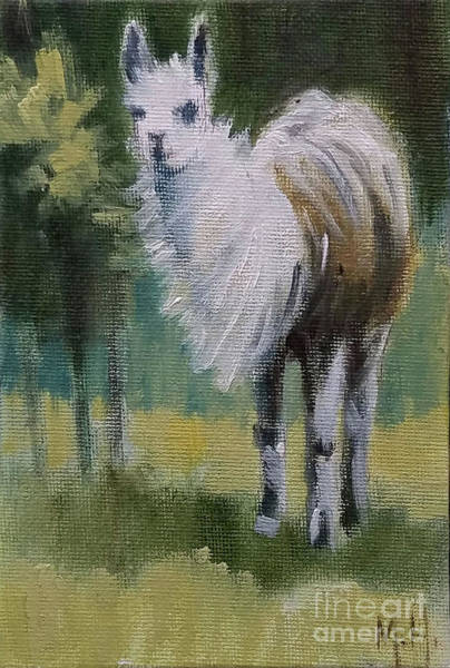 Alpaca Painting - Llama In The Wind by Mary Hubley