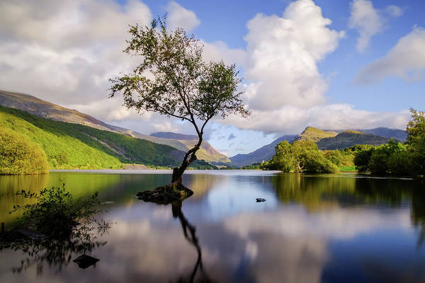 Photograph - Llyn Padarn, Snowdonia by Peter OReilly
