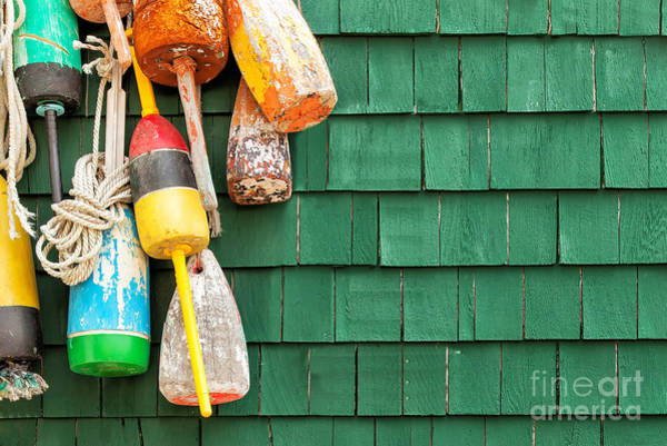 Wall Art - Photograph - Lobster Buoys Hanging On A Green Wood by Cdrin